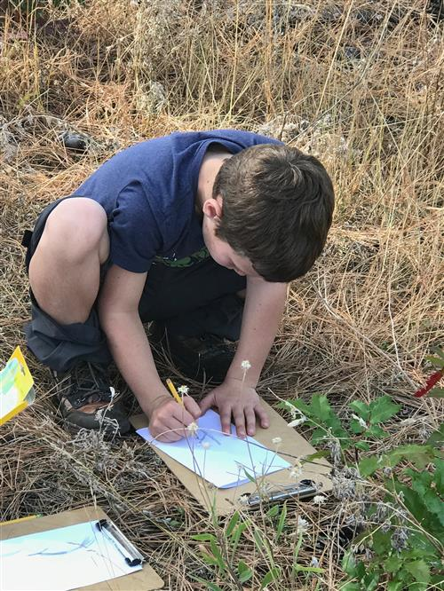 Students stopped during the hike to sketch plants they saw in their journals