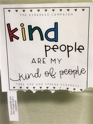 The Kindness Project'