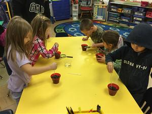 Avery, Sawyer, Derrel, Andrea, & Judah have planted their pumpkin seeds and now getting the soil ready to germinate them.