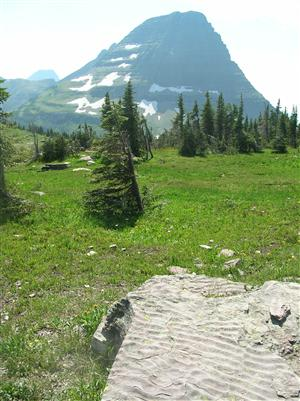 Continental Divide at Glacier National Park